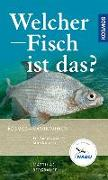 Cover-Bild zu Welcher Fisch ist das? von Bergbauer, Matthias
