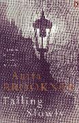 Cover-Bild zu Falling Slowly (eBook) von Brookner, Anita