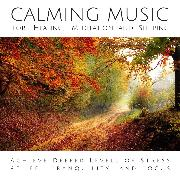 Cover-Bild zu eBook Calming Music for Healing, Meditation and Sleeping