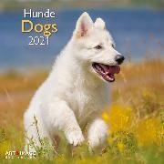 Cover-Bild zu Dogs 2021 A&I INT 30x30