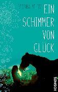 Cover-Bild zu Belitz, Bettina: Ein Schimmer von Glück