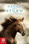 Cover-Bild zu Belitz, Bettina: Gegen den Sturm (eBook)