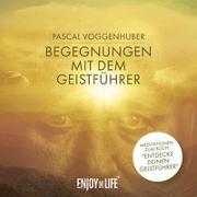 Cover-Bild zu Begegnungen mit dem Geistführer von Voggenhuber, Pascal