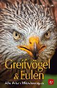 Cover-Bild zu BLV Greifvögel & Eulen von Thiede, Walther