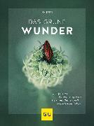 Cover-Bild zu Das grüne Wunder von Sperl, Ina