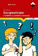 Cover-Bild zu Sturzprophylaxe (eBook) von boq - Beratung für Organisation und Qualität GmbH