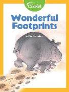 Cover-Bild zu Gorbachev, Valeri: Wonderful Footprints (eBook)
