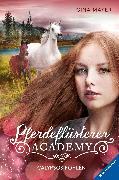 Cover-Bild zu Mayer, Gina: Pferdeflüsterer-Academy, Band 6: Calypsos Fohlen (eBook)
