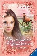 Cover-Bild zu Mayer, Gina: Pferdeflüsterer-Mädchen, Band 2: Ein großer Traum (eBook)