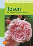 Cover-Bild zu Schultheis, Heinrich: Rosen (eBook)