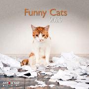 Cover-Bild zu Funny Cats 2020 Int.