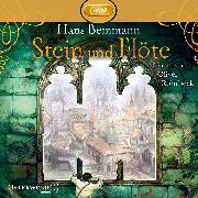 Cover-Bild zu Stein und Flöte