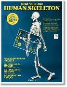 Cover-Bild zu Build Your Own Human Skeleton - Life Size!