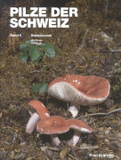 Cover-Bild zu Pilze der Schweiz 06. Russulaceae - Milchlinge - Täublinge
