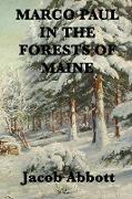 Cover-Bild zu Abbott, Jacob: Marco Paul in the Forests of Maine