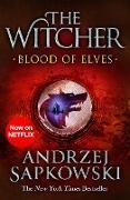 Cover-Bild zu Sapkowski, Andrzej: Blood of Elves (eBook)