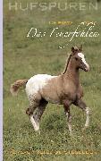 Cover-Bild zu Ludwig, Christa: Hufspuren: Das Feuerfohlen (eBook)