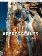 Cover-Bild zu Arbres géants de Suisse von Brunner, Michel