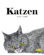 Cover-Bild zu Katzen in der Kunst von Hyland, Angus