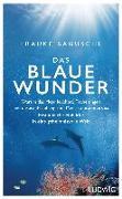 Cover-Bild zu Das blaue Wunder von Bagusche, Frauke