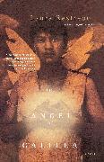 Cover-Bild zu Restrepo, Laura: The Angel of Galilea