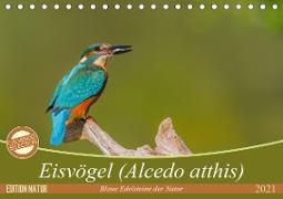 Cover-Bild zu Di Chito, Ursula: Eisvögel (Alcedo atthis) - Edelsteine der Natur (Tischkalender 2021 DIN A5 quer)