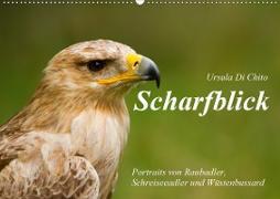 Cover-Bild zu Di Chito, Ursula: Scharfblick (Wandkalender 2021 DIN A2 quer)