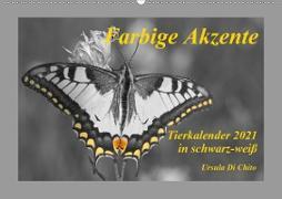 Cover-Bild zu Di Chito, Ursula: Farbige Akzente - Tierkalender 2021 in schwarz-weiß (Wandkalender 2021 DIN A2 quer)