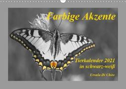 Cover-Bild zu Di Chito, Ursula: Farbige Akzente - Tierkalender 2021 in schwarz-weiß (Wandkalender 2021 DIN A3 quer)
