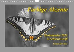 Cover-Bild zu Di Chito, Ursula: Farbige Akzente - Tierkalender 2021 in schwarz-weiß (Wandkalender 2021 DIN A4 quer)