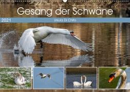 Cover-Bild zu Di Chito, Ursula: Gesang der Schwäne (Wandkalender 2021 DIN A2 quer)