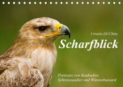 Cover-Bild zu Di Chito, Ursula: Scharfblick (Tischkalender 2021 DIN A5 quer)