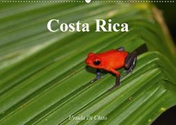 Cover-Bild zu Di Chito, Ursula: Costa Rica (Wandkalender 2021 DIN A2 quer)