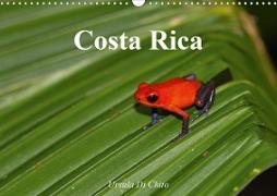 Cover-Bild zu Di Chito, Ursula: Costa Rica (Wandkalender 2021 DIN A3 quer)