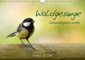Cover-Bild zu Di Chito, Ursula: Waldgesänge - Geburtstagskalender (Wandkalender immerwährend DIN A4 quer)