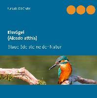 Cover-Bild zu Di Chito, Ursula: Eisvögel (Alcedo atthis)