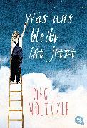 Cover-Bild zu Wolitzer, Meg: Was uns bleibt ist jetzt (eBook)