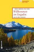 Cover-Bild zu Badraun, Daniel: Willkommen im Engadin