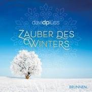 Cover-Bild zu Zauber des Winters