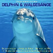 Cover-Bild zu eBook Delphin & Walgesänge: Stimmen und Rufe mit Meeresrauschen und traumhafter Entspannungsmusik