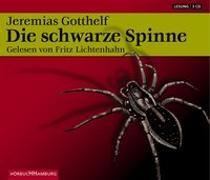 Cover-Bild zu Die schwarze Spinne