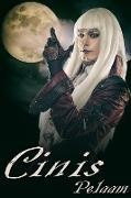 Cover-Bild zu Cinis (eBook) von Pelaam