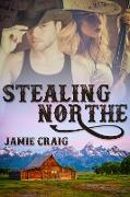 Cover-Bild zu Stealing Northe (eBook) von Craig, Jamie