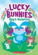 Cover-Bild zu Sky's Surprise (Lucky Bunnies #1), Volume 1 von Coe, Catherine