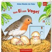 Cover-Bild zu Kleine Wunder der Natur: Vom Ei zum Vogel von Brauer, Sybille (Illustr.)