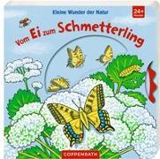 Cover-Bild zu Kleine Wunder der Natur: Vom Ei zum Schmetterling von Brauer, Sybille (Illustr.)