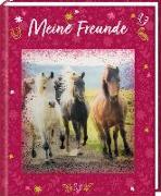 Cover-Bild zu Roß, Thea (Illustr.): Freundebuch - Pferdefreunde - Meine Freunde