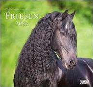 Cover-Bild zu Slawik, Christiane (Fotogr.): Friesen 2022 - Edle Pferde - Fotografiert von Christiane Slawik - DUMONT-Wandkalender - Format 38,0 x 35,5 cm
