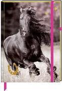 Cover-Bild zu Slawik, Christiane (Fotogr.): Notizbuch mit Stoffeinband - I Love Horses - Meine Notizen