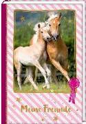 Cover-Bild zu Roß, Thea (Illustr.): Freundebuch - Pferdefreunde - Stute mit Fohlen